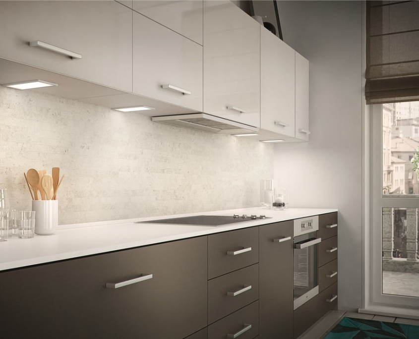 Cuisine contemporaine Contemporary Kitchen